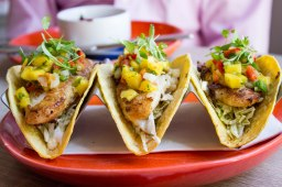 SoCal Fish Tacos at Sonoma Celler in Alexandria, VA